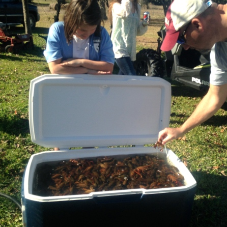 Checking out the crawfish